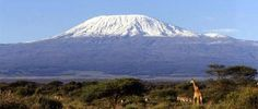 Mount Kilimanjaro is one of the most famous and highest freestanding mountains in the world, rising from the north-eastern part of Tanzania. Kilimanjaro stands at 5,895 metres (19,336 feet) high