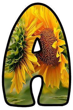 Sunflower Tree, Sunflower Quotes, Sunflower Party, Sunflower Pictures, Bullet Journal Font, Journal Fonts, Alphabet, Dahlia Flower, Vintage Lettering