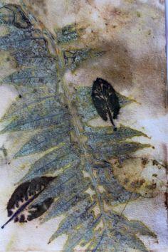 Wendy Feldberg's gorgeous natural dyes on paper. Artist Gifts | Threadborne
