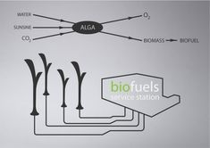 Future Transportation - Biolamp Streetlamp Converts Smog Into Fuel To Power Eco Cars Green Technology, Science And Technology, Future Technology Predictions, Used Cars Under 5000, Waste To Energy, Underground Tube, Future Transportation, Future Gadgets, Smart Lights