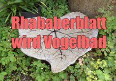 """Grethe vom dänischen Blog Grasklip hat zusammen mit einer Freundin ihr größtes Rhababerblatt aus dem Garten in ein Vogelbad verwandelt. Wie das geht, erklärt sie ganz anschaulich in Bildern, sodass es auch alle, die kein Dänisch lesen können, verstehen. Das Blatt wird auf einen kleinen Erdhügel gelegt und mit fertiggemischtem Beton (hier: 2 Säcke) aus dem Baumarkt übergossen. Es muss 4 Tage trocknen, dann kann man das eigentliche Blatt entfernen, das """"Betonblatt"""" abwaschen und im Garten…"""