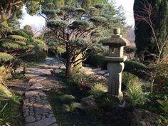 #японскийсад#jardinjaponais#jardinzen