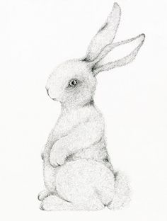 Kids Wall Art Bunny Rabbit Drawing Fine Art by ABitofWhimsyArt