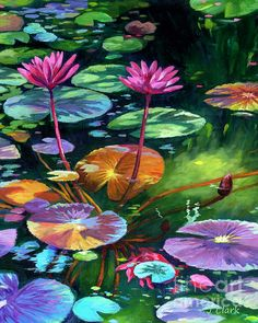 Pink Water Lilies and Lily Pads by John Clark Lilies Drawing, Water Lilies Painting, Lotus Painting, Lily Painting, Lotus Art, Guache, Mural Art, Wall Art, Cultura Pop