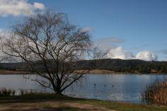 Lake Wallace at Wallerawang NSW