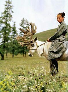 Mongolian girl with reindeer