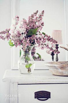 loft & cottage: lilac season