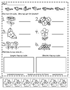 Jump into spring with The Growing Garden!  Have your students cut out the butterfly ruler, then measure the flowers in The Garden (an attached page...