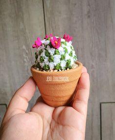 Crochet Cactus Free Pattern, Felt Succulents, Cacti, Crochet Flowers, Planter Pots, Patterns, Deco, Inspiration, Cactus Plants