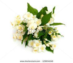Flower arrangement Stock Photos, Images, & Pictures | Shutterstock