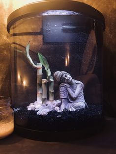 Buddha themed 5 gallon molly fish tank: 2 mollies, a sail, and a small aquatic frog all with plenty of room to grow Aquarium Fish For Sale, Fish Aquarium Decorations, Betta Aquarium, Small Fish Tanks, Cool Fish Tanks, Aquariums, Spongebob Fish Tank, Fish Tank Themes, Pisces