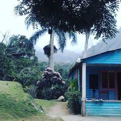 > #Jaraguenses paseando por Polo Barahona muchos frío y neblinas https://www.instagram.com/p/BBBVbMRGOsY/