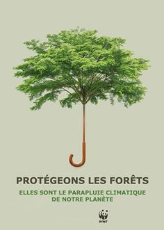 Publicité - Creative advertising campaign - WWF: Protect the forests. They are the climate umbrella of our planet Save Our Earth, Save The Planet, Web Banner Design, Design Web, Deforestation Poster, Environmental Posters, Environmental Science, Desgin, Save Environment