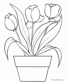 Since Tulips Grow From The Early Spring Till Early Summer These Tulip Coloring Pages