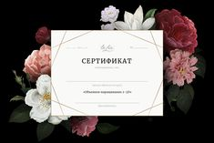 Certificate Templates, Gift Certificates, Web Studio, Envelope, Web Design, Place Card Holders, Branding, Logo, Film