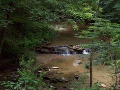 Beautiful Wayne County, Indiana.