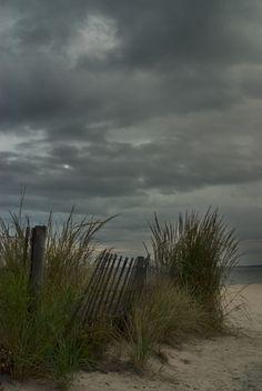 Beach, Beach Grass, Delaware,