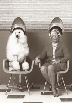 Woman and poodle und