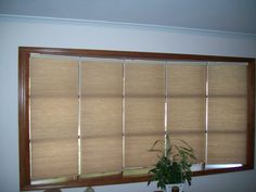 Window Treatment ideas, tips and advice Bow Window Treatments, Cellular Shades, Blinds, Windows, Room, Furniture, Home Decor, Bedroom, Decoration Home