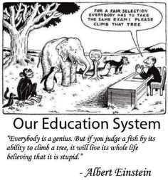 Funny but true. A little humor around standardized testing in education :) Great Quotes, Me Quotes, Inspirational Quotes, Funny Quotes, Humor Quotes, Quotes Images, Funny Humor, Wisdom Quotes, Stupid Quotes