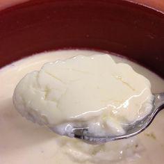 Evde yoğurdumuzu yaparken doğal ilk mayayı nereden bulacağız? İşte Sağlıklı Yaşıyoruz olarak nohuttan yoğurt mayasını sizler için hazırladık.