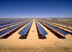 O desenvolvimento da energia solar é um grande negócio na ensolarada Califórnia, impulsionado pelos baixos preços dos painéis solares e da unidade para reduzir as emissões de gases de efeito estufa para combater as alterações climáticas. Alguns biólogos, no entanto, estão crescendo preocupados que a colocação de novas usinas de energia solar em grande escala no deserto de Mojave pode prejudicar a diversidade biológica encontrada lá.
