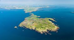 Skomer Island, home of the Puffins! It's about a 4 hour walk but do take a picnic for half way round!