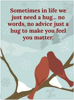 Quotes Sometimes in life we just need a hug... No words, no advice just a hug to make you feel you matter.