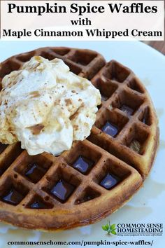 Pumpkin spice waffles pair up a favorite fall flavors, abundant pumpkin and rich whipped cream for an easy by memorable breakfast treat.