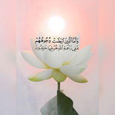 Beautiful Quran Verses, Beautiful Islamic Quotes, Beautiful Arabic Words, Islamic Inspirational Quotes, Quran Tafseer, Holy Quran, Phone Wallpaper Images, Islamic Quotes Wallpaper, Islamic Images