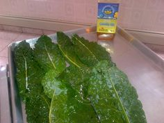 Fresh Kale Chips with Mountainview Canola!  #canola #chloraphyll
