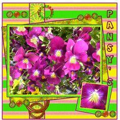 Pansy's made by : TravlynWomyn-Summertime_Fun_ TravlynWomyn-2011028