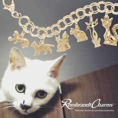 Show off those cute kitties today!  #Charms #Bracelet