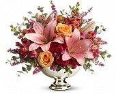 Send get well flowers from a real Baltimore, MD local florist. House of Arnold Florist has a large selection of gorgeous floral arrangements and bouquets. We offer same-day flower deliveries for get well flowers. Hot Pink Roses, Orange Roses, Pale Pink, Beautiful Bouquet Of Flowers, Fall Flowers, Get Well Flowers, Share Pictures, Gift Bouquet, Wedding Reception Flowers