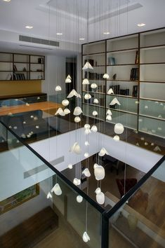 Modern staircase chandelier lighting Customized Inspired by the sea creations, 'Bivalvia' hand blown glass lighting, is an innovative art glass Stairwell Chandelier, Hanging Ceiling Lights, Ceiling Light Fixtures, Glass Chandelier, Modern Chandelier, Chandelier Lighting, Hall Lamps, High Ceiling Lighting, Chandelier Ideas