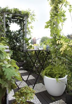 15 Excellent DIY Backyard Decoration & Outside Redecorating Plans 2 Using alcohol bottles for garden Outdoor Retreat, Outdoor Rooms, Balcony Design, Garden Design, Small Gardens, Outdoor Gardens, Ar Fresco, Terrace Garden, Backyard Patio