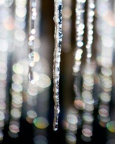 Winter is Here by HurdandHoney on Etsy