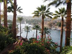Egypt Tourism, Egypt Travel, Le Nil, Nile River, Future Travel, Luxor, North Africa, Vacation Destinations, Wonderful Places