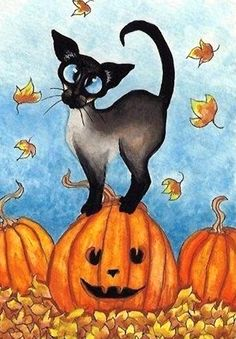 The Funniest Cat Moment - Siamese Cat Jack-o-Lantern Pumpkin - Art Print or ACEO by Bihrle Halloween Artwork, Halloween Pictures, Halloween Cat, Image Chat, Gatos Cats, Pumpkin Art, Cat Paws, Siamese Cats, I Love Cats