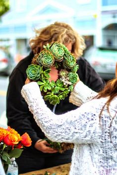 ciao! newport beach: how to make your own succulent wreath