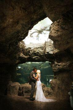 Bride & Groom Kissing Wedding Portrait - Pink & Grey Modern Florida Aquarium Destination Wedding - Erica Blaine Photography