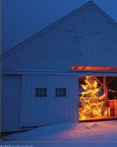 Beautiful in the barn!