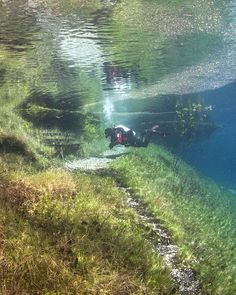Austria's Green Lake in the Hochschwab Mountains is a hiking trail in the winter. The snow melts in early summer and creates a completely clear lake.  Now to learn how to scuba dive.
