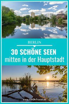 Die schönsten Seen in Berlin.  berlin, berlin tipps, berlin insider tipps, Berlin bilder, berlin sehenswürdigkeiten S Bahn, Der Bus, Grey Heron, Public Bathing