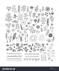 http://image.shutterstock.com/z/stock-vector-hand-drawn-vintage-floral-elements-swirls-laurels-frames-arrows-leaves-feathers-dividers-211233712.jpg