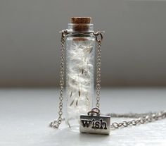 Dandelion seeds in a bottle.
