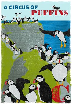 A circus of Puffins, Woop Studios