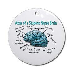 Atlas of a student nurse brain