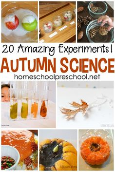 20 Engaging Fall Fun Science Experiments for Preschoolers - Pumpkins, apples, leaves, and more! Come discover 20 engaging fall fun science experiments for preschoolers! science for preschoolers preschool activities preschool crafts ki. Science Experiments For Preschoolers, Preschool Science Activities, Autumn Activities For Kids, Science Activities For Kids, Cool Science Experiments, Science Lessons, Science Projects, Steam Activities, Science Ideas