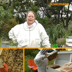 Moving_Bees_To_A_Long_Bench_Hive_Sm